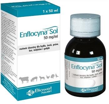 Enflocyna Sol nowa