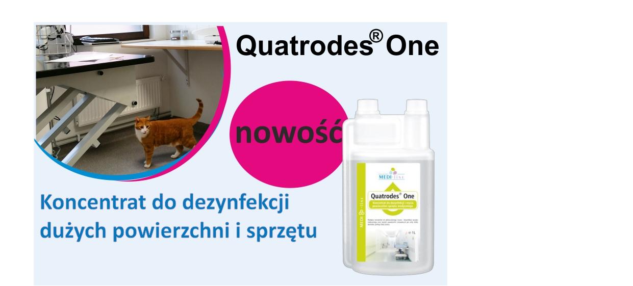 Quatrodes www
