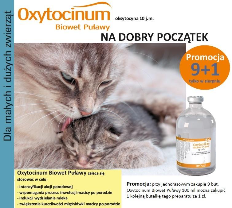 Promo na stronę maj-sierpień 2017 -Oxytocinum.POPR